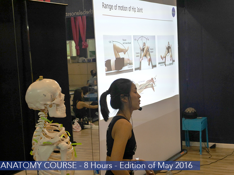 anatomy course Bangkok The Balance Studio 20 copy